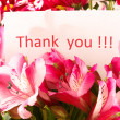 Stock Photo: Thank you`