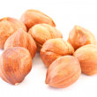 Hazelnut — Stock Photo #4961518