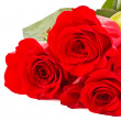 Red roses — Stock Photo #5024927
