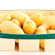 Young potatoes — Stock Photo #5148638