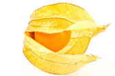 Physalis peruviana — Stock Photo