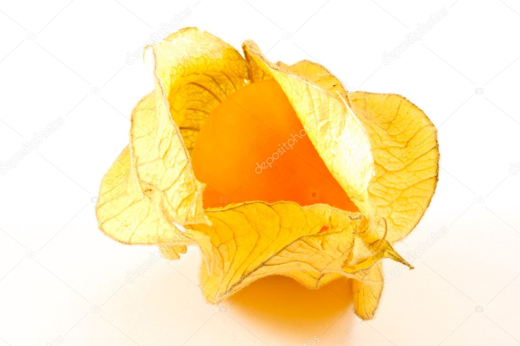 Yellow ripe fruit of Physalis Peruvian on a white background — Stock Photo #5209886