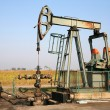Oil field — Stockfoto