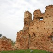 Medieval Serbian ruins — Stock Photo
