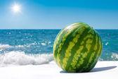 Hela vattenmelon nära havet utomhus i solig dag — Stockfoto
