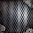 Photo: Grunge crack metal background with rivets