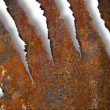 Torn rusty metal texture over white background — Stock Photo #5313388