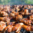 Barbecue or fried chicken and pork meat - Stock Photo