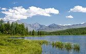 Hermoso lago en altai — Foto de Stock