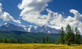 Panorama of North-Chuya ridge, Altai mountains — Stock Photo