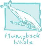 Humpback Whale in Blue — Stock Vector