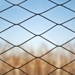 Autumn landscape for the small lattice fence - Stock Photo