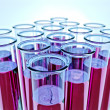 Sixteen test tubes with pink fluid and shallow DOF — Stock Photo