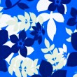 Blue And White Floral Background — Stock Photo #4267297