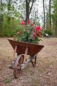 Antigo carrinho de mão enferrujado — Fotografia Stock