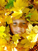 Face of child in leaves in autumn — Stock Photo