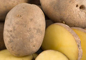 Plain Potatoes — Stock Photo