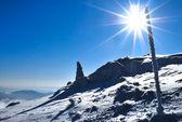 Winter sun — Stock Photo