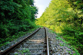 Old railway — Stock Photo