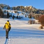 Winter hiking — Stock Photo