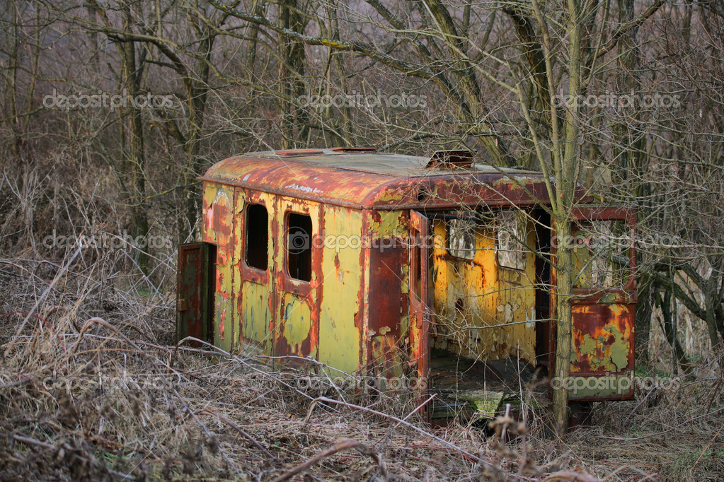 Long ago abandoned trailer forgotten in the woods — Stock Photo #4868339