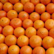 Orange — Stock Photo #4354171