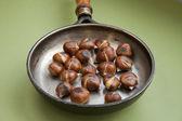 Chestnut — Stock Photo
