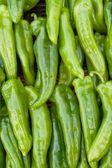 Pimienta verde — Foto de Stock
