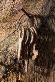 Forgotten keys on an old nail — Stock Photo