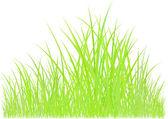 Green grass graphic — Stock Photo