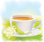 Linden flowers and a cup of tea. Vector illustration. — Stock Vector
