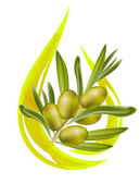 Olive oil. Stylized drop of oil, and olive branch inside. Vector — Vetor de Stock
