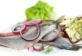 Typical Dutch herring — Stock Photo