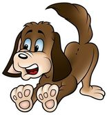 Brown Dog — Stock Vector
