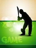 Cricket game — Stock Vector