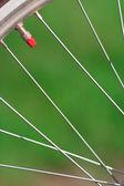 Kolo rowerowe — Zdjęcie stockowe