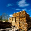 Stock Photo: Lumber collection