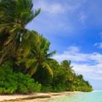 Tropical Paradise at Maldives — Stock Photo #4065795