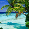 Tropical Paradise at Maldives — Stock Photo #4065971