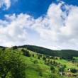 Stock Photo: Sumer landscape