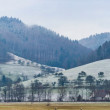 Snow landscape, panorama at Germany, nearly Feldberg - Stock Photo
