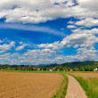 Panorama from black forest in Germany in near of Freiburg - Stock Photo
