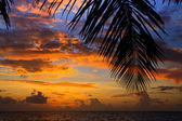 Maldiviska sunset — Stockfoto