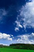 Våren landskap - gröna fält, den blå himlen — Stockfoto