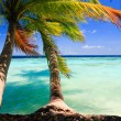 Tropical Paradise at Maldives — Stock Photo #4144017
