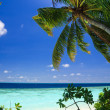 Stock Photo: Tropical Paradise at Maldives