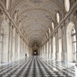Royalty-Free Stock Photo: Italy - Royal Palace: Galleria di Diana, Venaria
