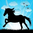 Black horse silhouette — Stock Photo