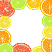 Citric frame — Stock Photo