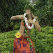 Hawaiian hula danced by a teenage girl — Стоковая фотография